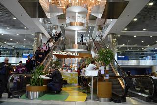 Лестница между этажами в аэропорту Домодедово