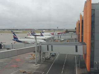 Planes at terminal E of Sheremetyevo airport