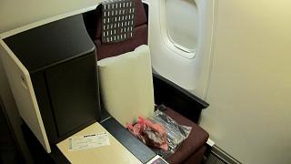 Место бизнес-класса в Боинге-767-300 Японских авиалиний