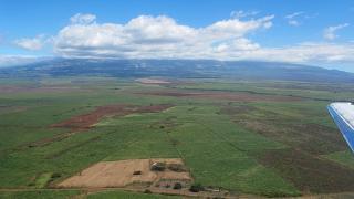 Плантации сахарного тростника на гавайском острове Мауи
