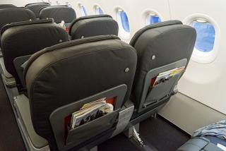 Passenger seats business class in the Airbus A321 Turkish Airlines