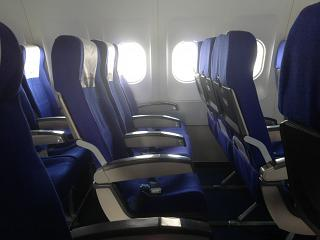 The passenger seats in the plane, an Airbus A320 Russia