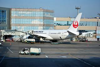 Boeing-787-8 Japanese airlines at Domodedovo airport