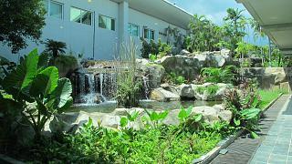 Сад в аэропорту Лангкави