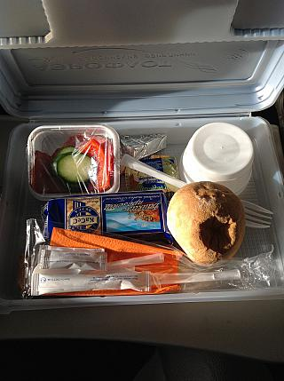 Food on the flight Aviakompaniya Orenburg airlines Irkutsk-Moscow