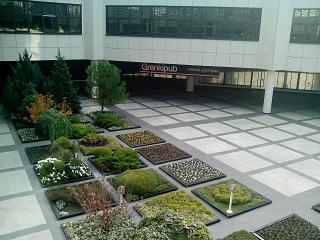 Courtyard garden in Sochi airport