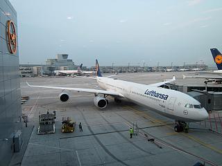 Airbus A340-600 Lufthansa в аэропорту Франкфурта-на-Майне