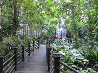 Сад рядом с терминалом-спутником аэропорта Куала-Лумпур