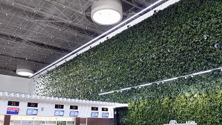 """Green wall"" in the passenger terminal of Simferopol airport"