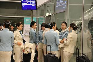 Airline stewardess Korean Air