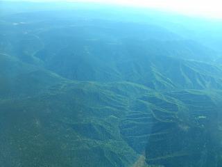 Forests in Buryatia East of lake Baikal