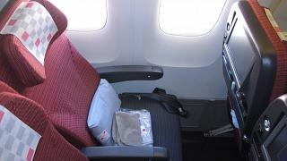 Place in economy class in the Boeing-767-300 Japanese airlines