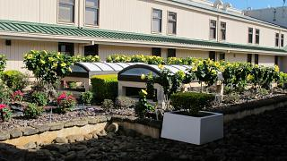 Небольшой сад в аэропорту Лихуэ