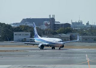 Самолет Боинг-737-800 авиакомпании ANA в аэропорту Осака Итами