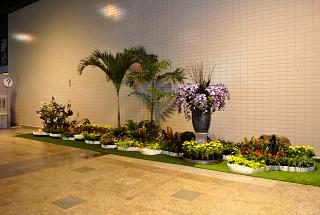 Flower installation at the airport at don Muang