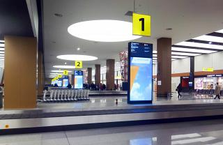 The baggage claim area in terminal B of Sheremetyevo airport
