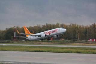 Взлет самолета Боинг-737-800 Pegasus Airlines в аэропорту Домодедово