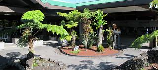 The green area at the Hilo airport