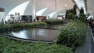 Оазисы из живых цветов в терминале 3 аэропорта Дубай