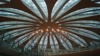 Свод терминала D аэропорта Москва Шереметьево