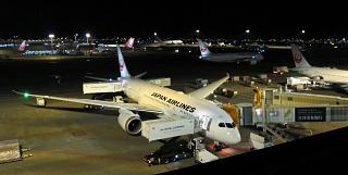 Boeing-787-8 Japanese airlines at the airport Tokyo Narita