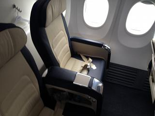 Business class on the Boeing-737-800 airline Flydubai