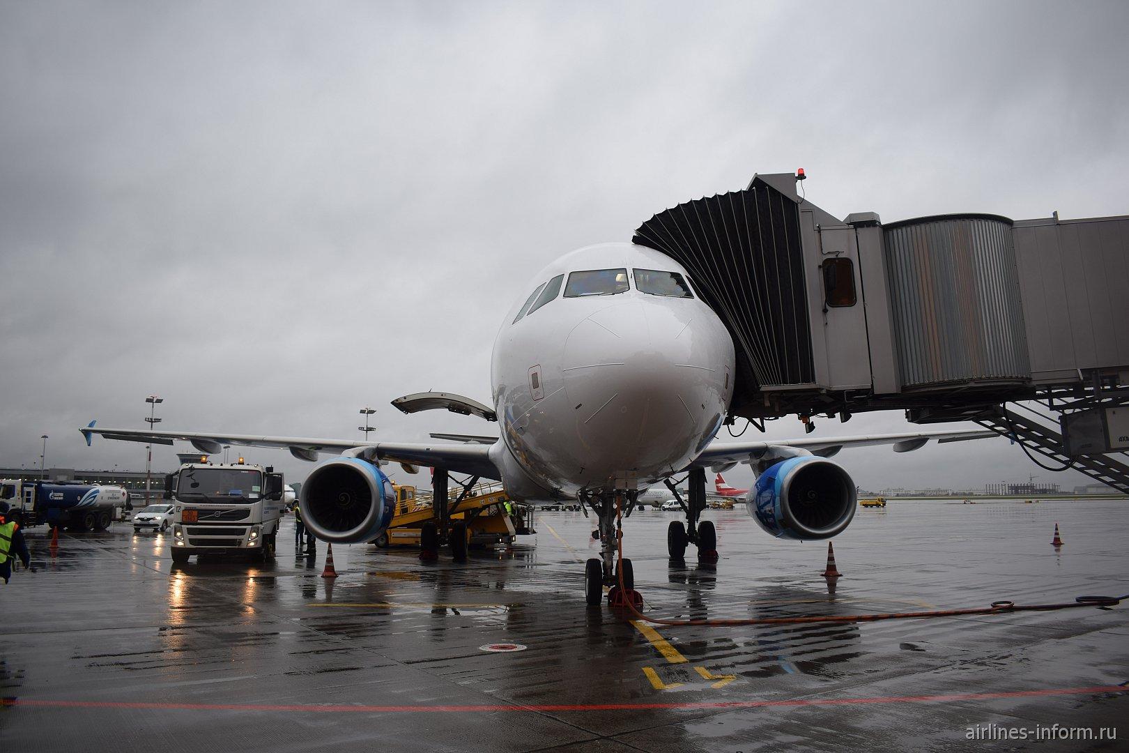 """Аэробус А320 авиакомпании """"Кобальт"""" в аэропорту Шереметьево"""