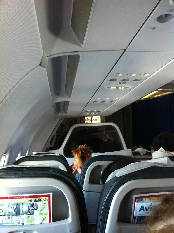 Салон самолета Airbus A319 авиакомпании Татарстан