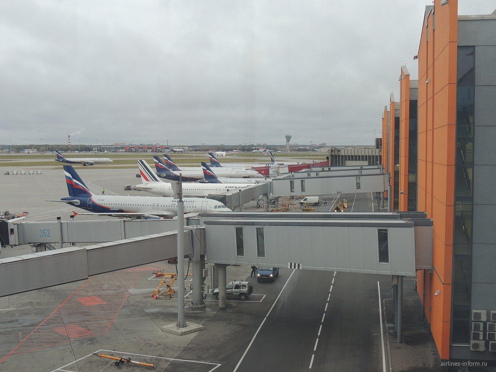 Самолеты у терминала Е аэропорта Шереметьево