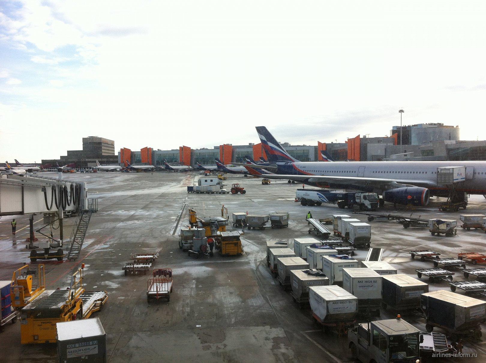 Вид на перрон терминала D