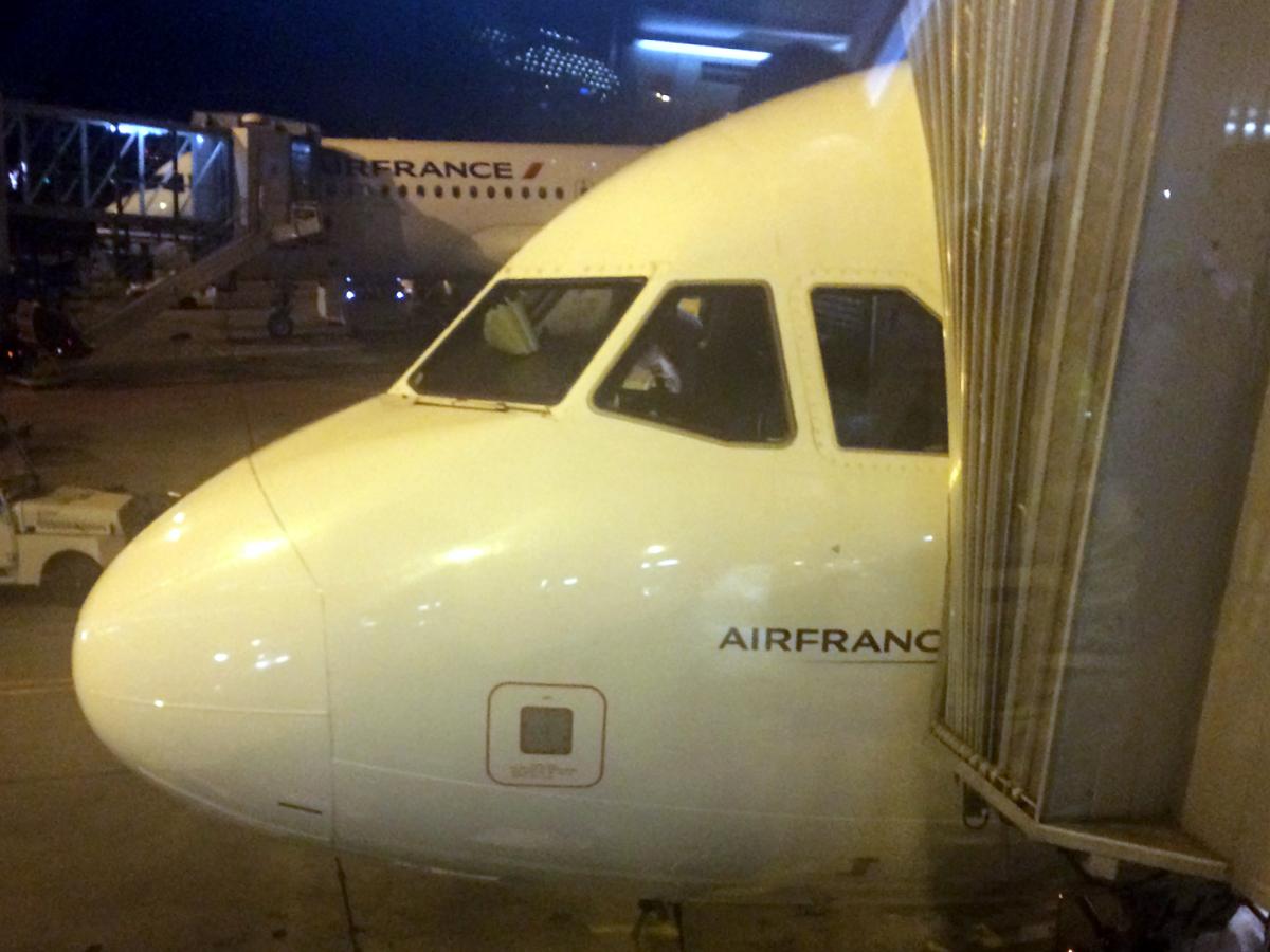 France is in the air. Москва - Париж с авиакомпанией Air France.