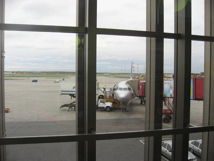 Самолет Airbus A320 в аэропорту Шереметьево