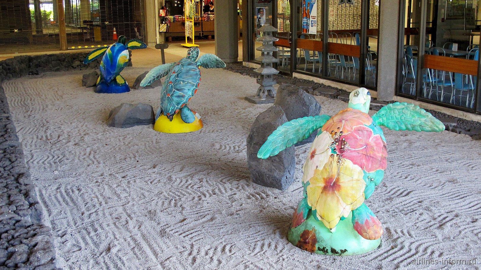 Черепашки в аэропорту Хило