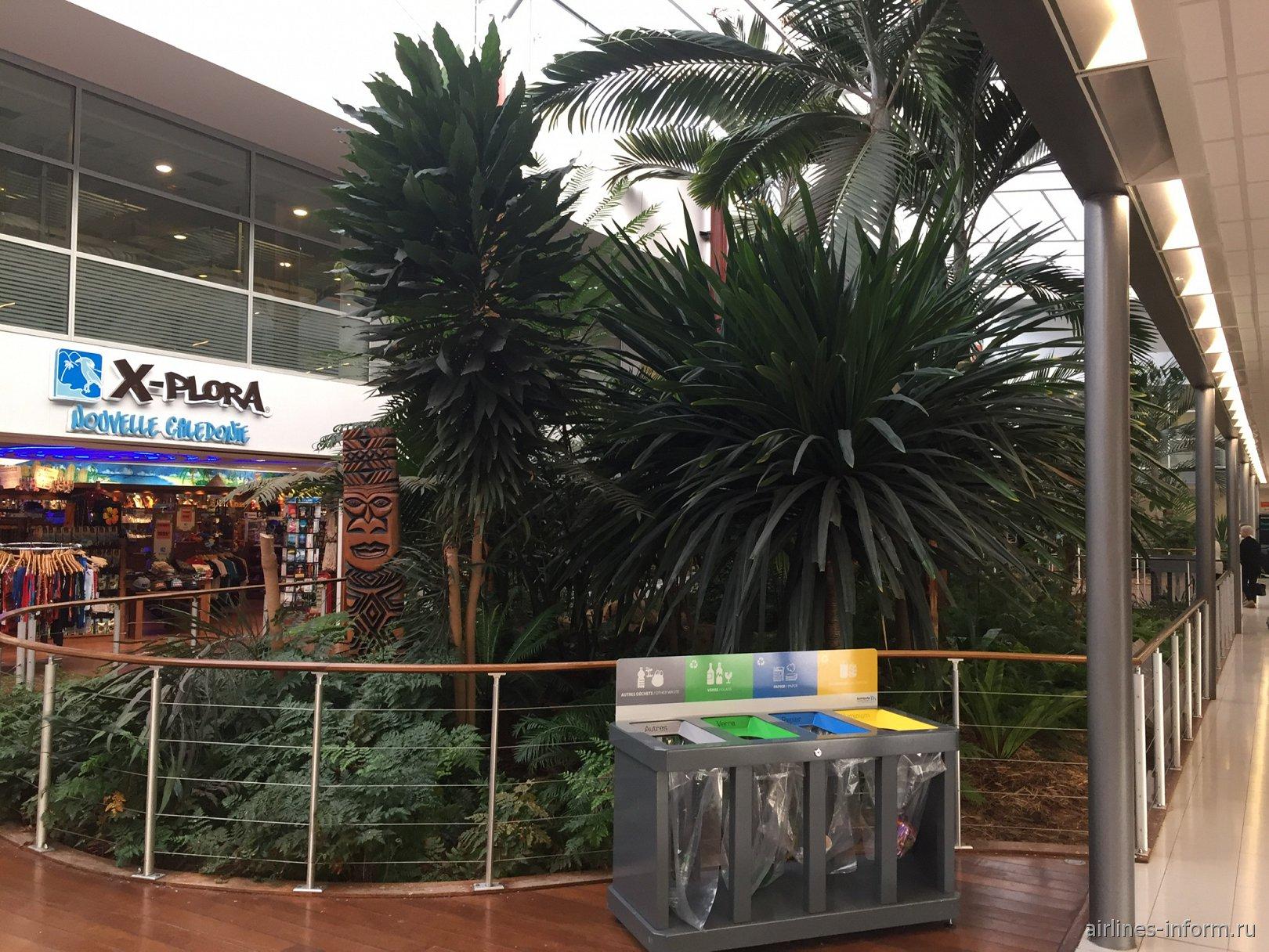 Зеленый уголок в аэропорту Нумеа Ла-Тонтута