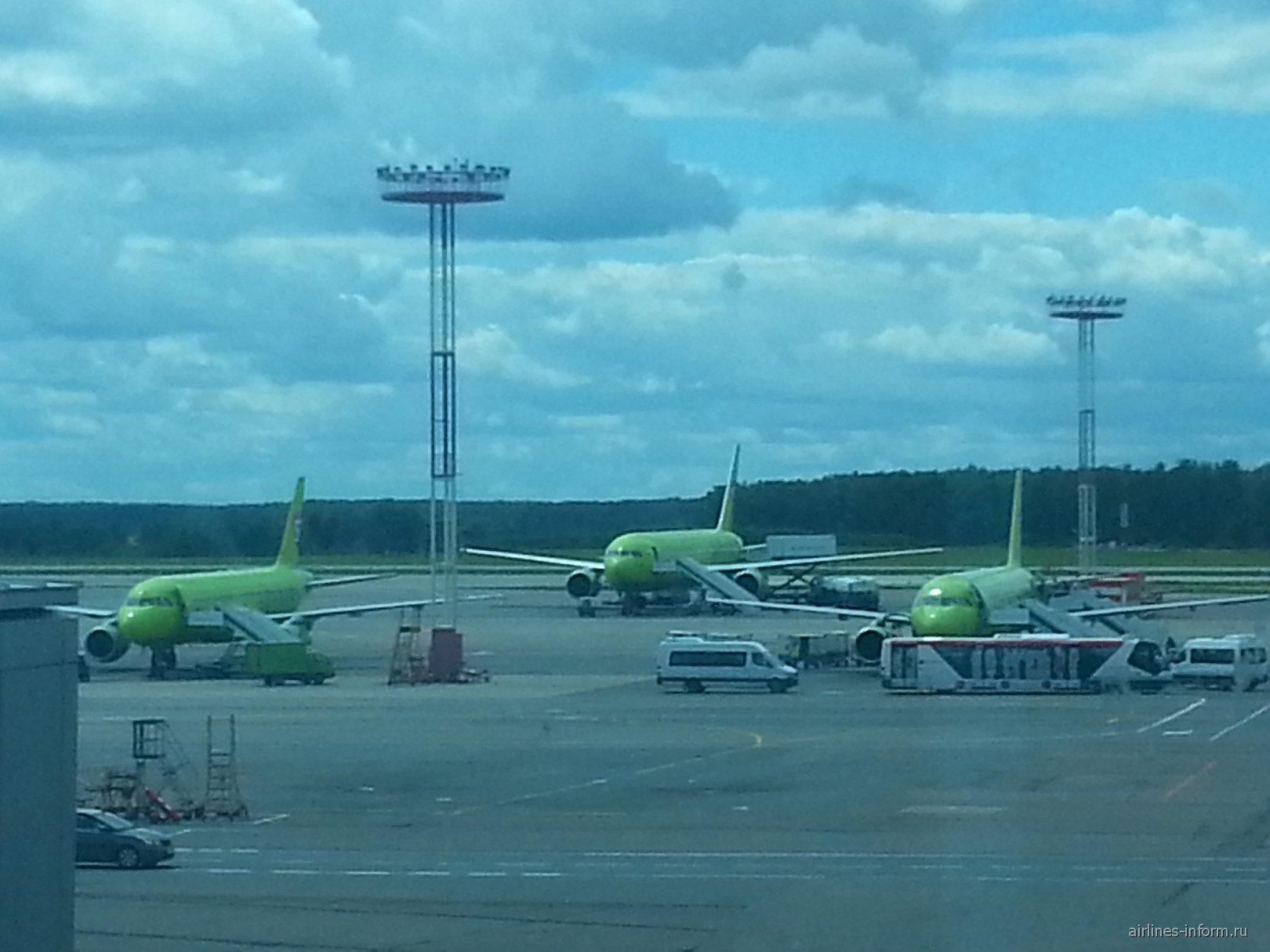 Домодедово аэропорт Википедия