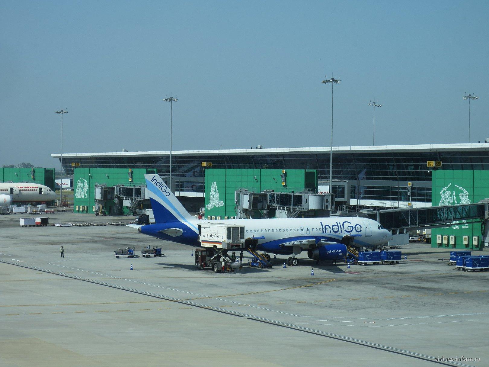Airbus A320 авиакомпании IndiGo в аэропорту Дели имени Индиры Ганди