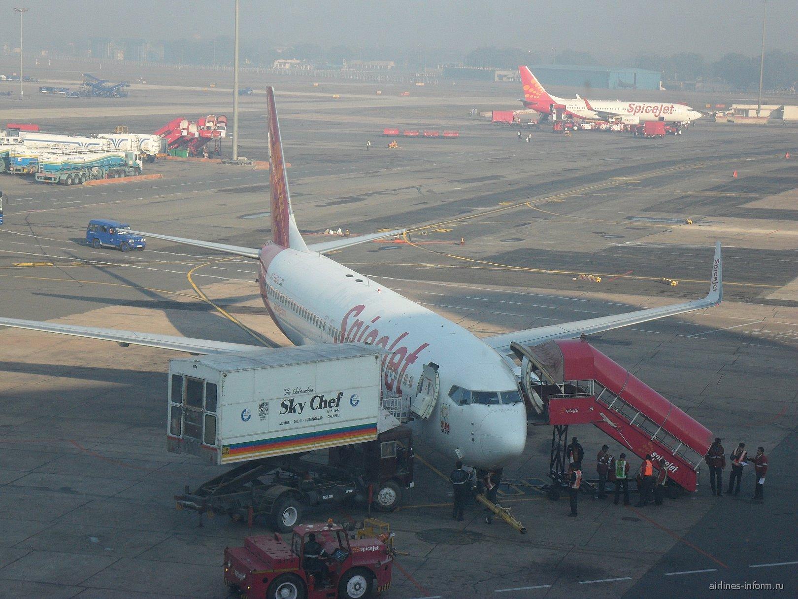 Боинг-737-800 авиакомпании SpiceJet в аэропорту Дели