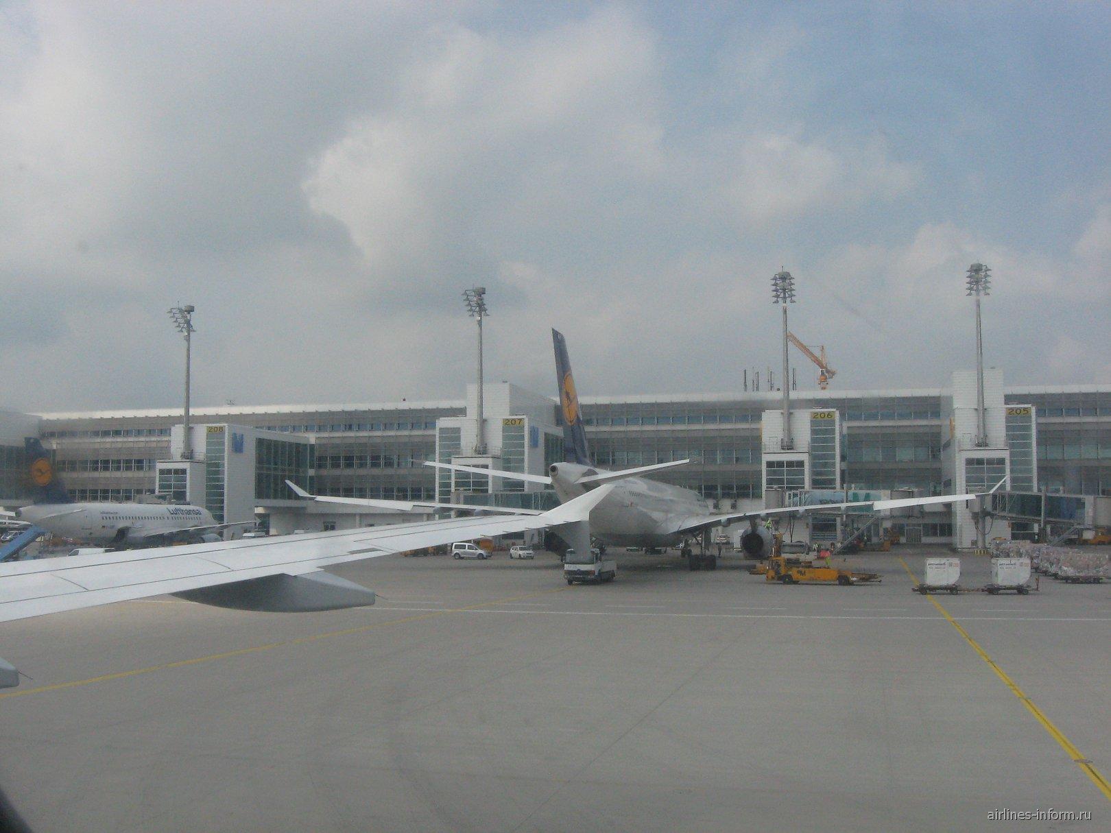 A319 и A330 Lufthansa