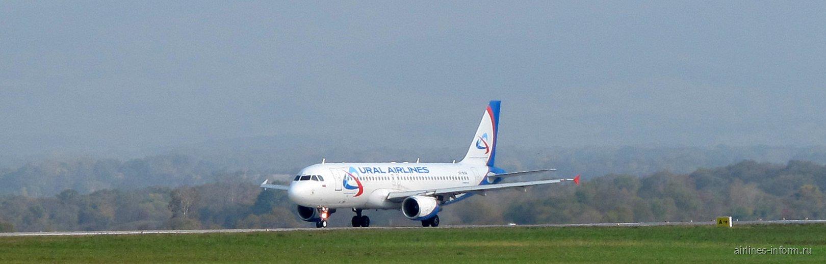 Airbus A320 Уральских авиалиний в аэропорту Владивостока