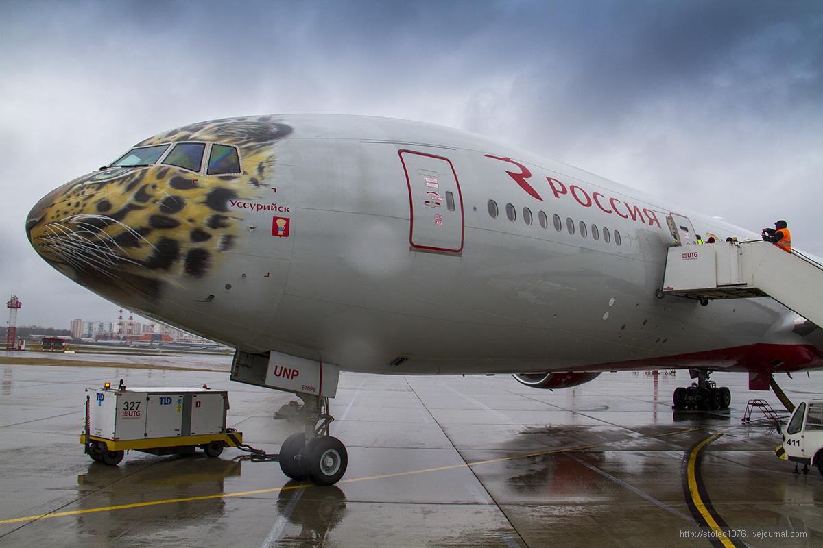 """Обзор бизнес класса Боинг 777-300 """"Леопардолет"""" авиакомпании Россия"""