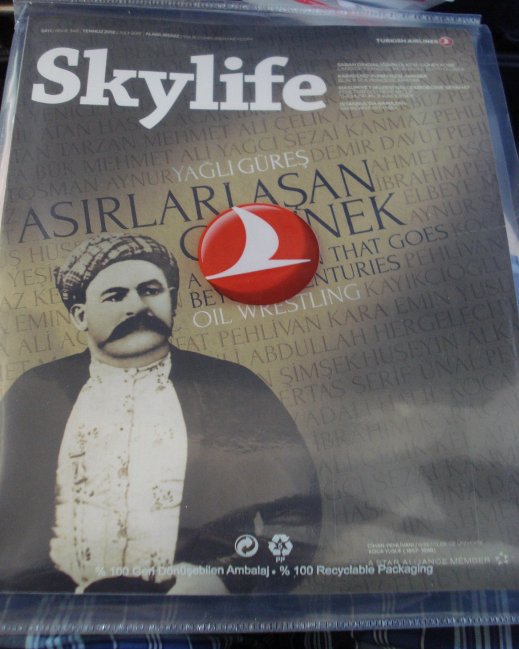 Бортжурнал авиакомпании Турецкие авиалинии