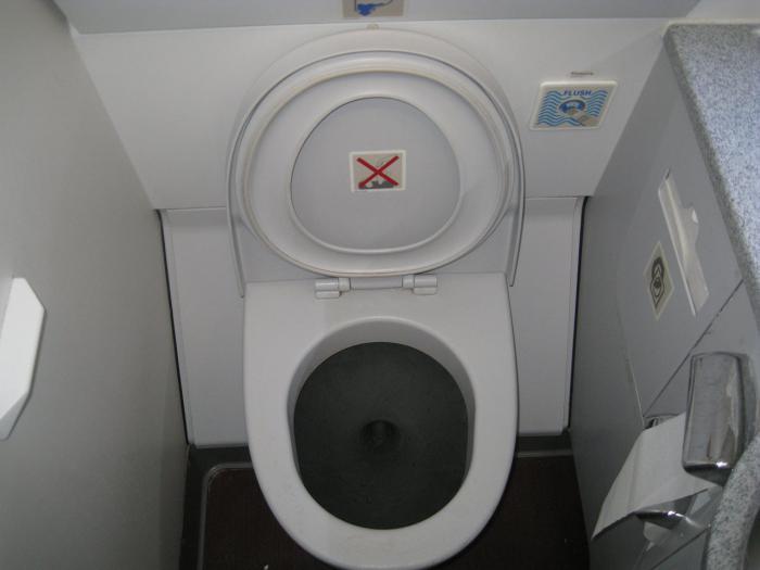Туалет самолета Airbus A319 авиакомпании Аэрофлот