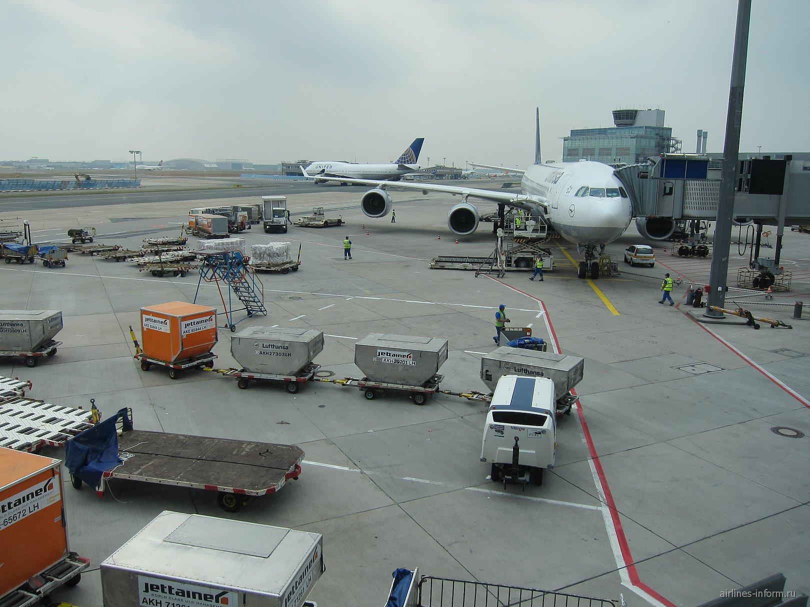 Самолет А340-600 авиакомпании Люфтганза в аэропорту Франкфурт