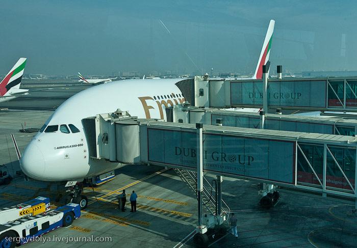 Бизнес-классом на Airbus A380 Emirates