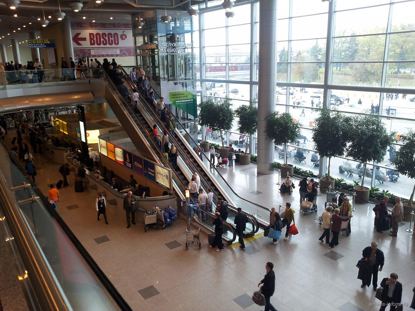 В московском аэропорту Домодедово