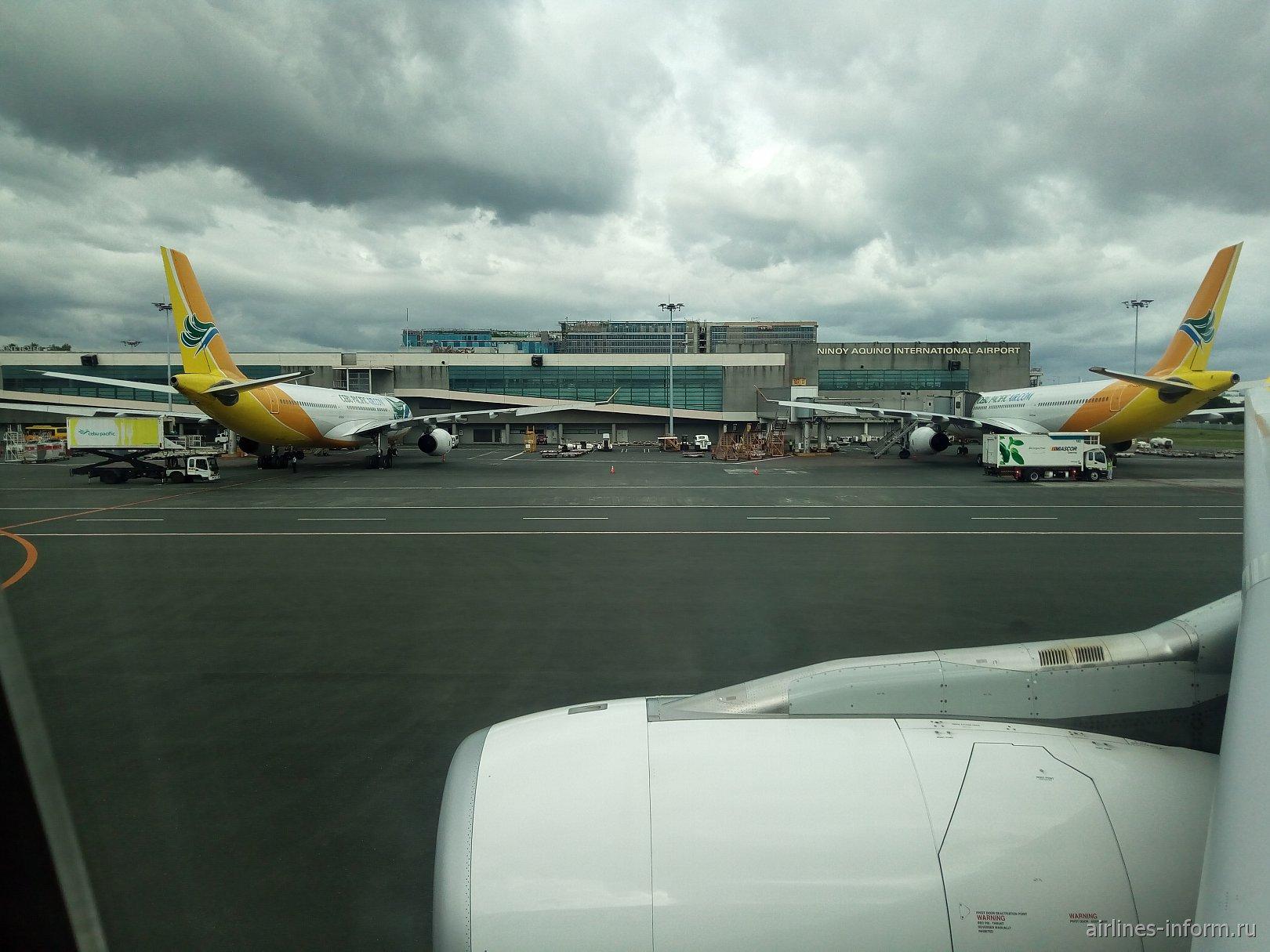 Такого Cebu  вы ещё не видели. Бангкок - Манила на А330 Cebu Pacific.