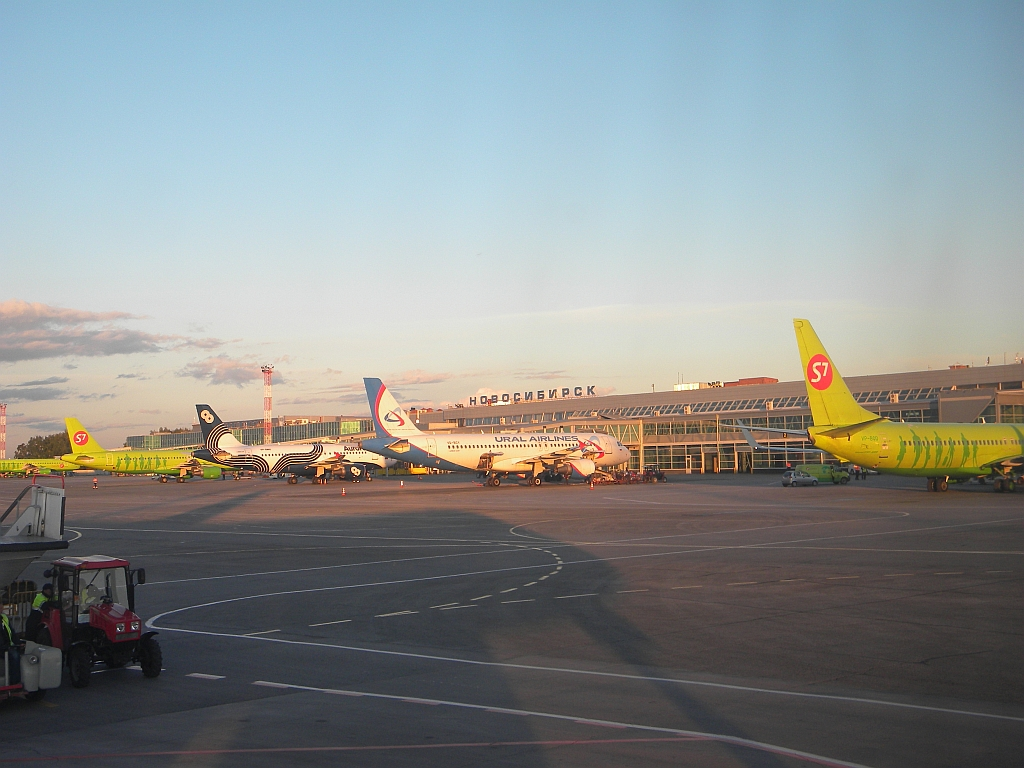 Терминал внутренних линий в аэропорту Новосибирск Толмачево