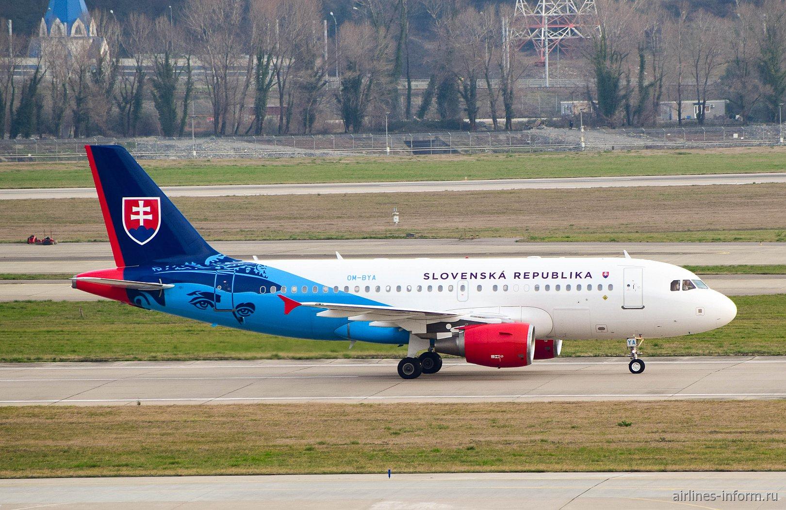 Самолет Airbus A319 OM-BYA Правительства Словакии в аэропорту Сочи