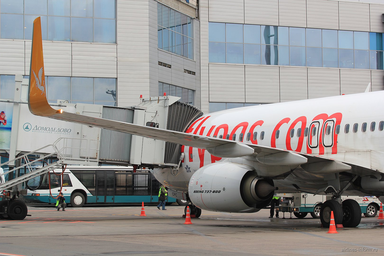 Боинг-737-800 авиакомпании Pegasus в аэропорту Домодедово