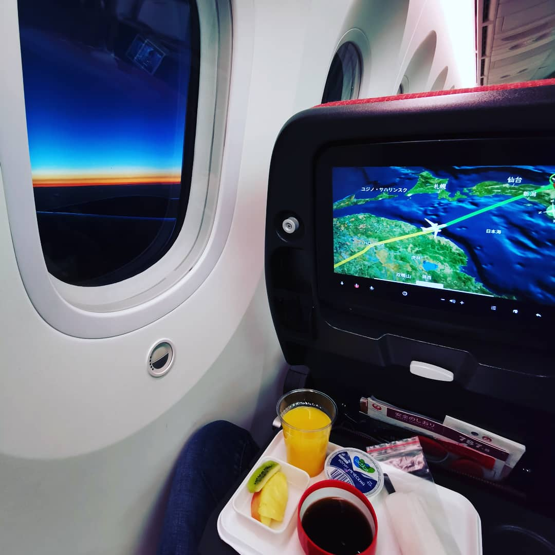 Japan Airlines. Перелёт Москва - Токио на Boeing 787 Dreamliner